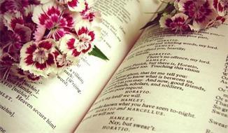 个人文集,诗集,小说出版
