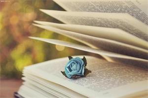 个人出书,出版个人文集,诗歌文集